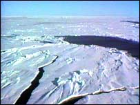 Arctic landscape (Image: BBC)