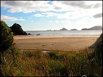 Codfish Island, NZAS