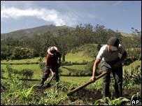 Farmers in Columbia