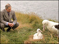 Prince Charles with an albatross, Getty Images