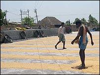 Worker at Bagalaxmi rice mill