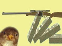 Imagen tomada de la página en tributo al gorrión.