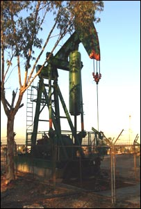 Oil derrick in LA