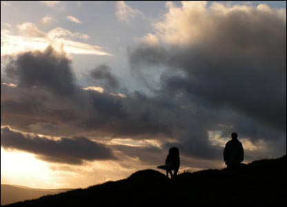 Walking the dog on hills above the Horseshoe Pass, Llangollen (Richard Down)