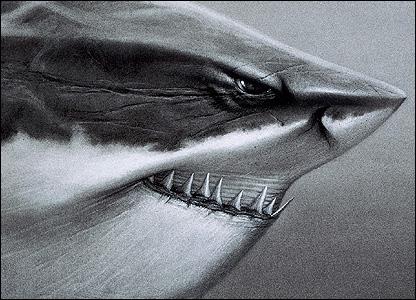 Sharks, Finding Nemo - Copyright Disney/Pixar
