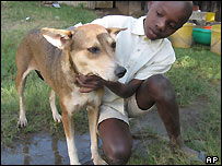 11-year-old Felix Omondi with the dog