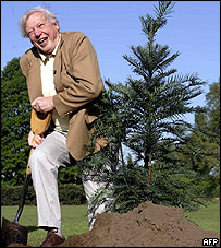 David Attenborough plants a Wollemi pine at Kew