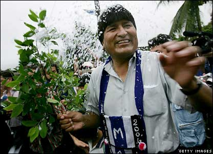 Presidential candidate Evo Morales holds a coca branch as he prepares to vote