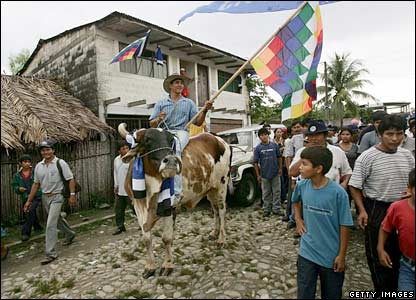 Evo Morales' supporter holds the Bolivian indigenous Indian flag as he rides a cow
