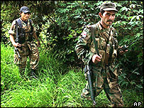 Farc rebels in Colombia (archive image)