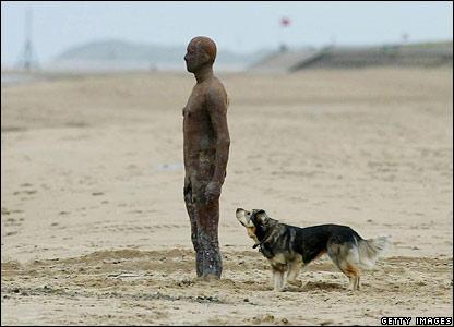 A dog admires one of artist Antony Gormley's sculptures on a Merseyside beach
