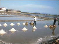 Salt workers in Cambodia