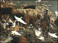People work and sheep graze at the rubbish tip in Akrash