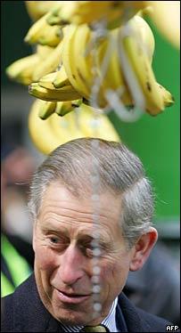 Charles under hanging bananas