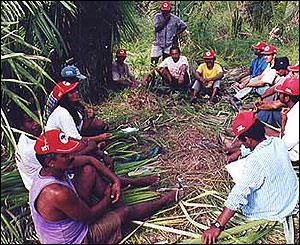 Campesinos Sin Tierra.