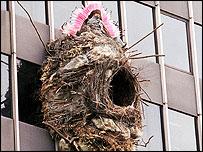 Benjamin Verdonck on the nest on the side of the Rotunda building