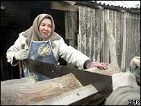 Woman sawing wood in a village near Kiev