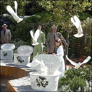 Doves being released at the Imperial War Museum's commemorative Peace Garden