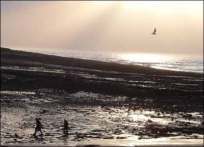 John Parker from Heath took this view of beachcombing at Sully Island on New Year's Day