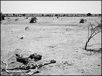 Adolescente muerto en Darfur luego de bombardeo del gobierno.