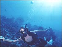Image of diving