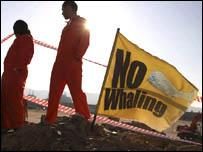 Image: �Greenpeace/ J.Sutton-Hibbert2005