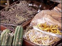 Hierbas medicinales bolivianas