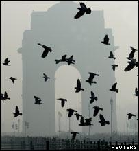 Delhi in the cold