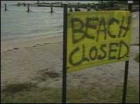 Amity Point beach