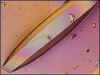 Proteína cristalizada de una concha de langosta. Imagen: Imperial College