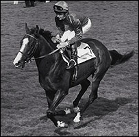 Shergar and jockey Walter Swinburn