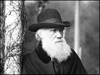 Darwin at Down House in 1881 (Natural History Museum)