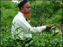 Mohammed Shahiduzzaman, the acting director of the Bangladesh Tea Research Institute.