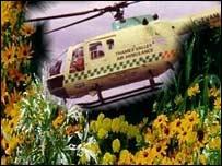 Detail from Thames Valley & Chiltern Air Ambulance Trust garden open days publicity