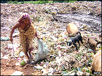 An Indian woman collects plastic for recycling from a dump