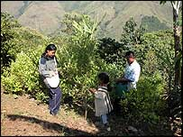 Nasa Indian coca farmers in the mountains of western Colombia