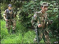 Revolutionary Armed Forces of Colombia (Farc)
