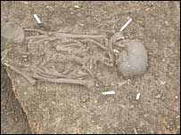 Skeleton uncovered at Kings of Wessex School