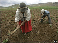 A Bolivian woman working on her farm