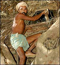 Kapila in his tree house [Pics: Sanjeeb Mukherjee]