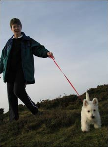 Fiona and Holly, the Westie, walking on Hope Mountain, Flintshire (Martin Lee)