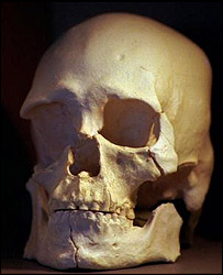 The skull of Kennewick Man, AP