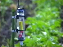 Wireless sensor in a field of crops