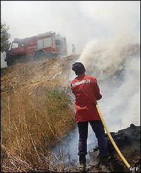 Portuguese firefighters battle brush fires in July 2004