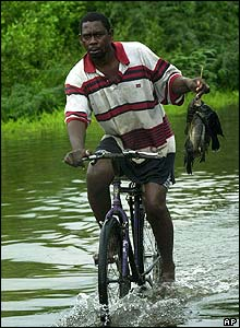 A man rides through floodwaters in Caymanas Park, Saint Catherine, Jamaica.