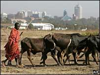 Kenyan herder near Nairobi