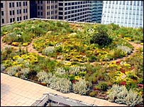 William McDonough's Chicago City Hall Green Roof