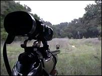 Hunt gun