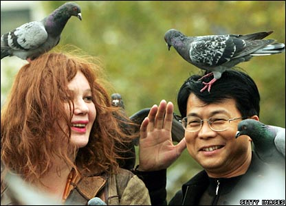 Pigeons perch on visitors in Trafalgar Square