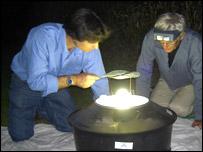A mercury vapour moth trap
